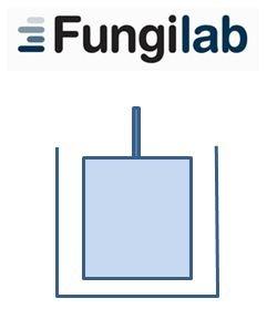 Viscosimetro cilindri coassiali Fungilab geass torino